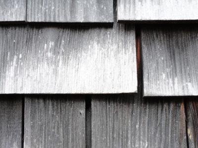 alterazione legno